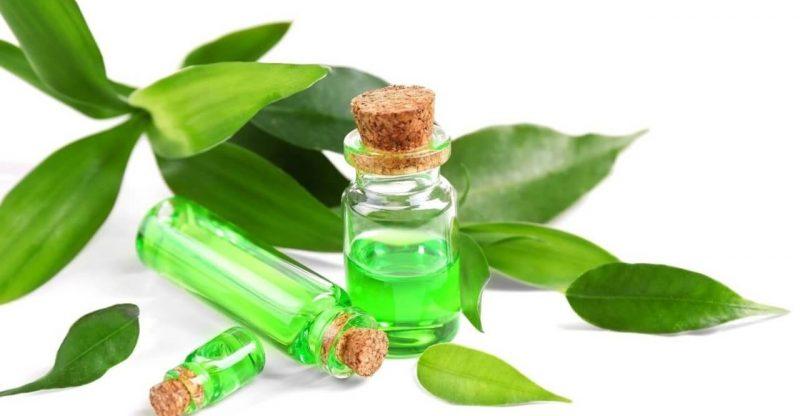 Aceite De árbol De Té Para El Acné Guía Para Utilizarlo